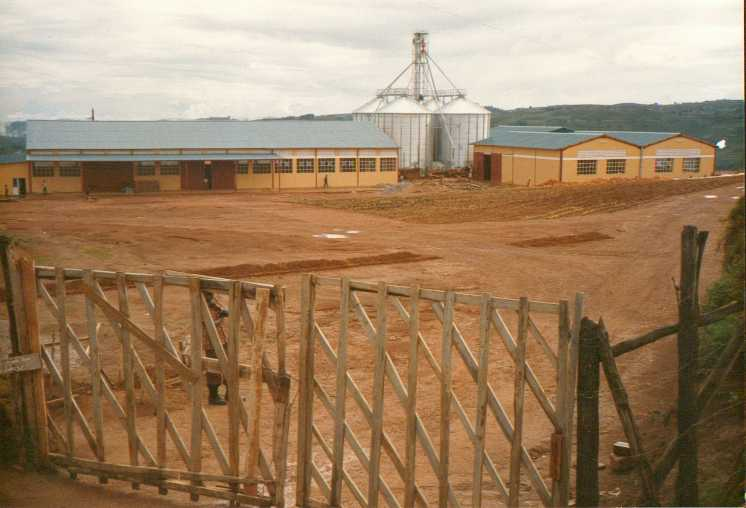 Uruganda rwa Kabuga rusya ingano i Byumba